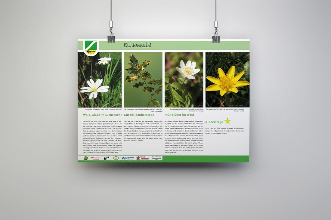 Natur- und Kulturpfad Sterup· Infotafeln | PR-Material