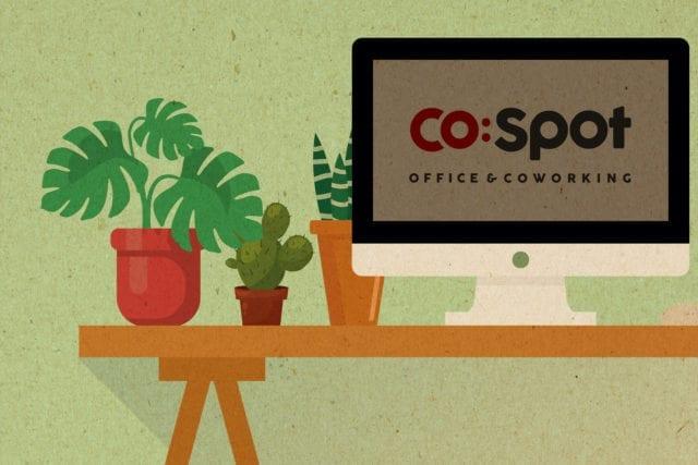 Roślinność w biurze, a efekty pracy