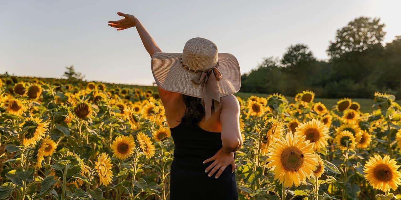 Changer Sa Vie : 7 Conseils Incontournables Pour Penser Positivement