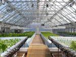 Forbes опубликовала 25 наиболее инновационных стартапов в сфере сельского хозяйства