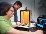 Уничтожение сорняков лазером – новое изобретение из Боннского университета
