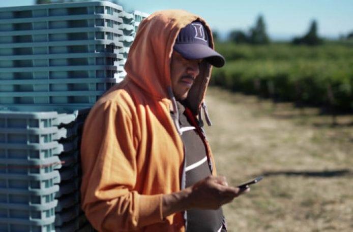 Ganaz – новый стартап из Сиеттла намерен упростить и удешевить процесс найма сельскохозяйственных работников
