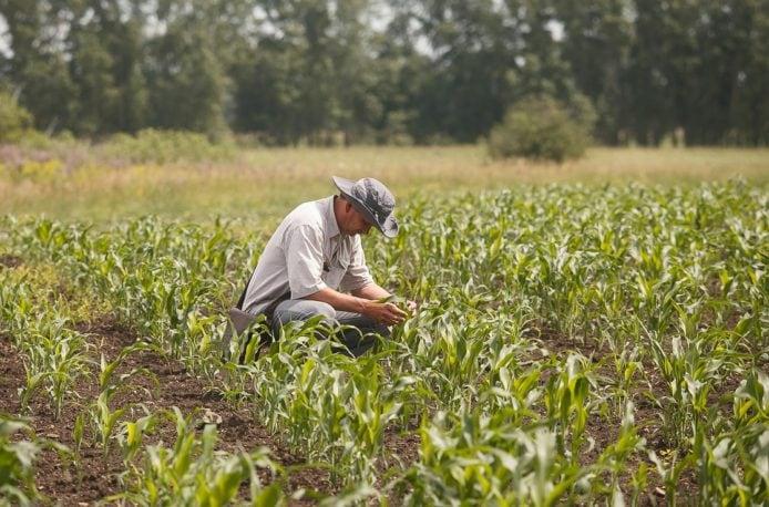 Кемеровский «Азот» расширяет сотрудничество с фермерами