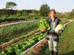 В России принят закон об органической продукции