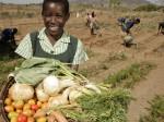 «Уралхим» и «Уралкалий» завалят Зимбабве удобрениями