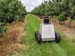 Роботы помогут там, где бессильны дроны