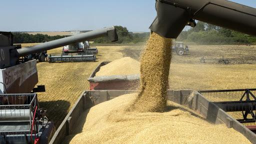 En los primeros 5 meses del año la agroindustria aportó divisas por US$ 13.300 millones