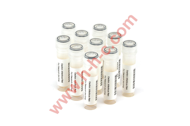 HIV 1/2 Rapid Test Verification Panel