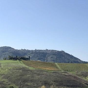 Montalcino Rock