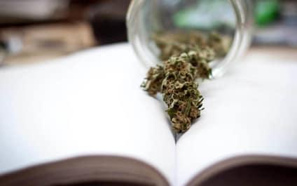Was ist THCV und welchen medizinischen Nutzen hat dieses Cannabinoid?