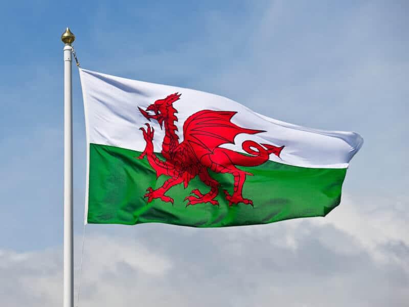 Neues Cannabisforschungsinstitiut in Wales geplant