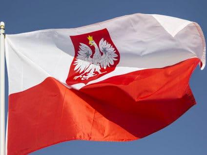 Bauern in Polen profitieren nicht vom Medizinalhanf-Boom