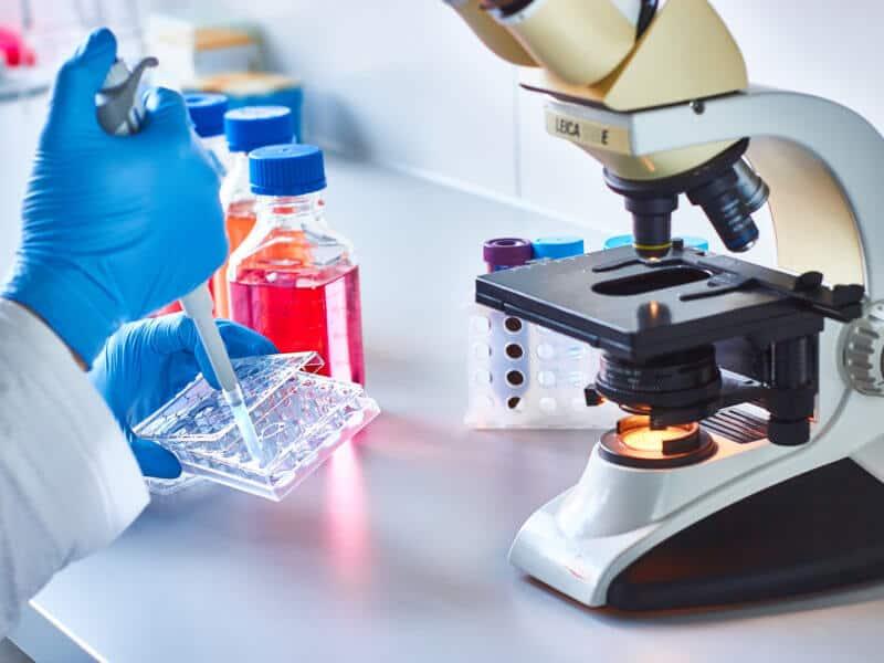 Cannabinoide könnten Krebs bekämpfen
