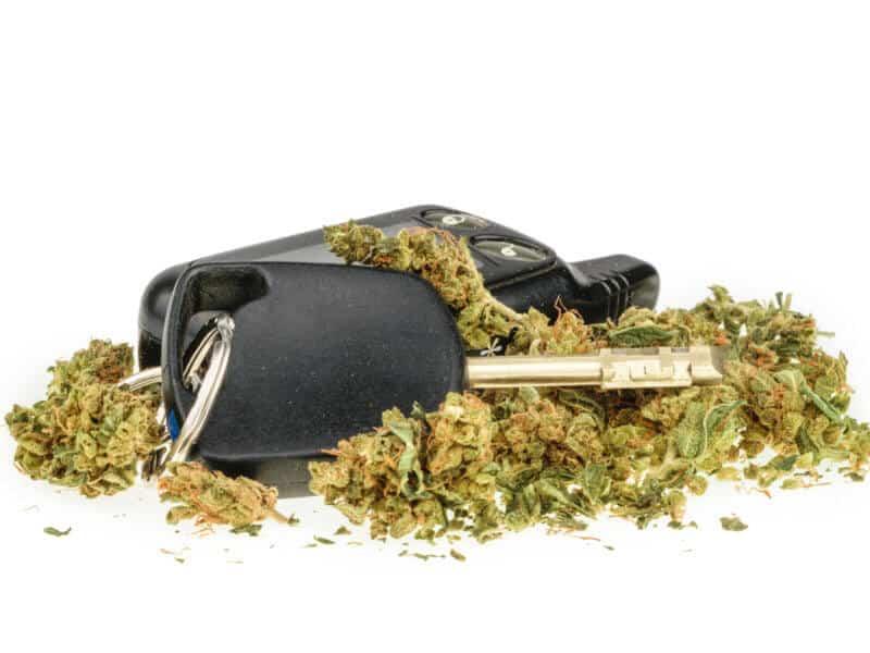 Cannabiskonsum beeinträchtigt Fahrtauglichkeit