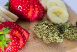 Diabetes mellitus und Cannabis als Medizin