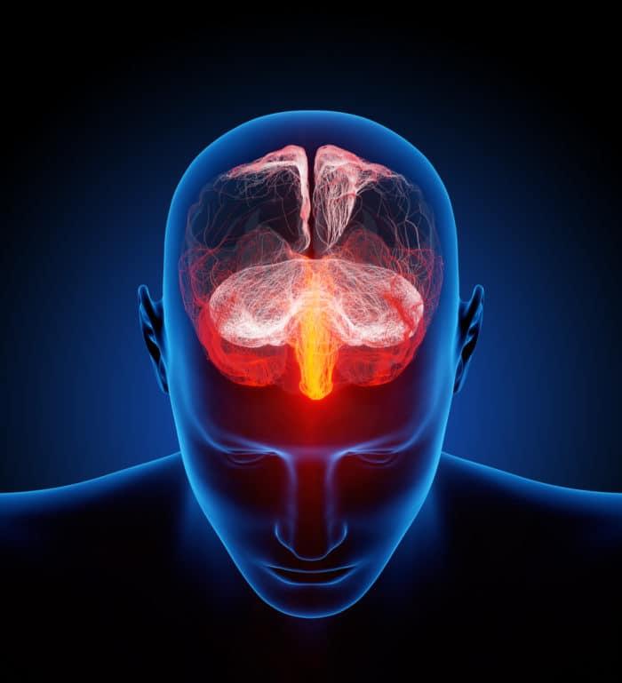 Cannabisverbindungen verringern Entzündungsreaktion im Gehirn