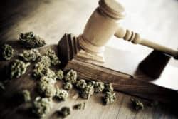 Cannabisrezept: ADHS-Patient scheitert vor Gericht