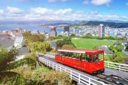 Neuseeland legalisiert Cannabis als Medizin