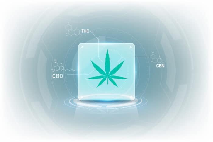 Cannabis-Ausbildungsplattform für französische Ärzte