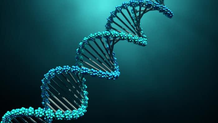 DNA und personalisierte Cannabisempfehlungen