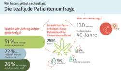 Cannabistherapie: Leafly.de Studie mit Patienten