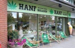 Cannabis-Studie in Deutschland: Probanden gesucht
