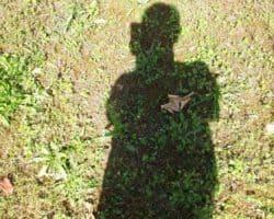 Leafly.de Patientenakte: Susanne, 43, Fibromyalgie, Baden-Württemberg