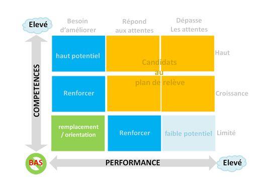 Le Talent Mapping : La carte des Talents dans Fœderis