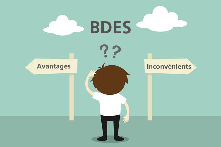 Base de données économiques et sociales : avantages et inconvénients