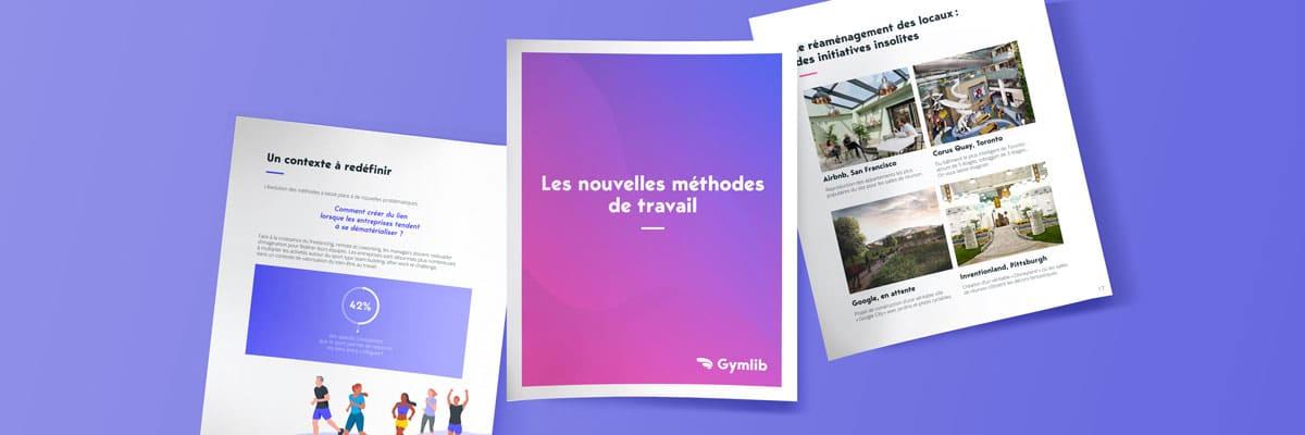 ebook : Les nouvelles méthodes de travail