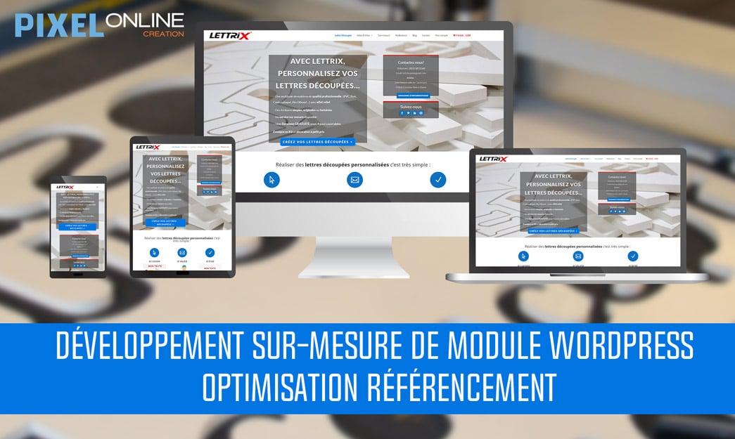 Développement Web sur-mesure de module WordPress et optimisation du référencement