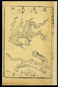 Drachen und Tiger medizinisches Qigong