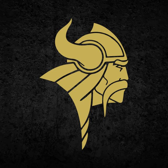 Vikings 500x500 1