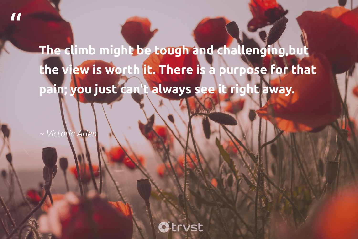 """""""The climb might be tough and challenging,but the view is worth it. There is a purpose for that pain; you just can't always see it right away.""""  - Victoria Arlen #trvst #quotes #purpose #findingpupose #mindset #changemakers #dosomething #findpurpose #nevergiveup #health #ecoconscious #purposedriven"""