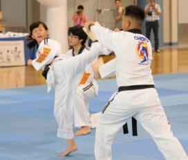 Choi's Martial Arts