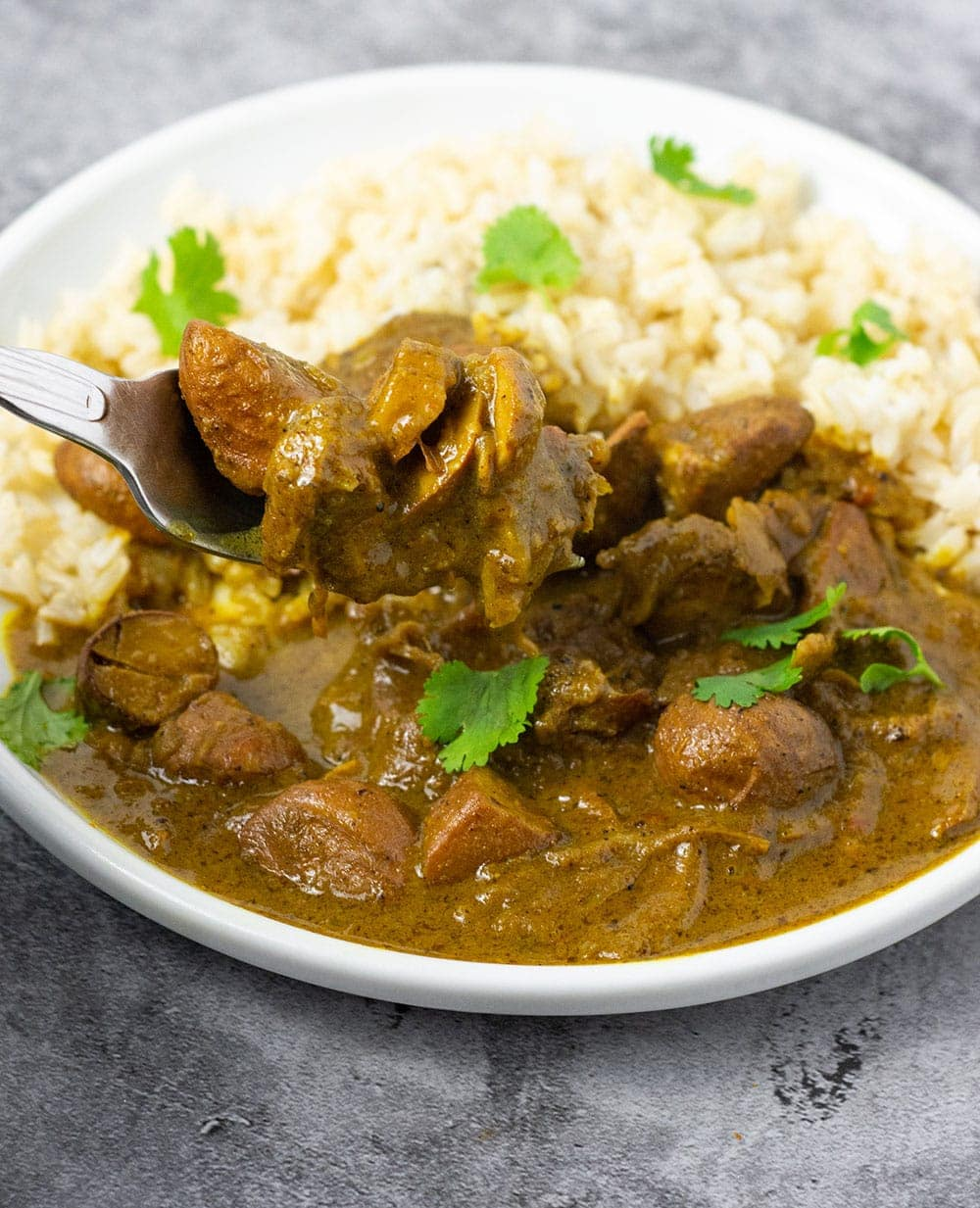 Chataigne (bread nut) curry on a white plate with rice and garnished with cilantro leaves on a grey background