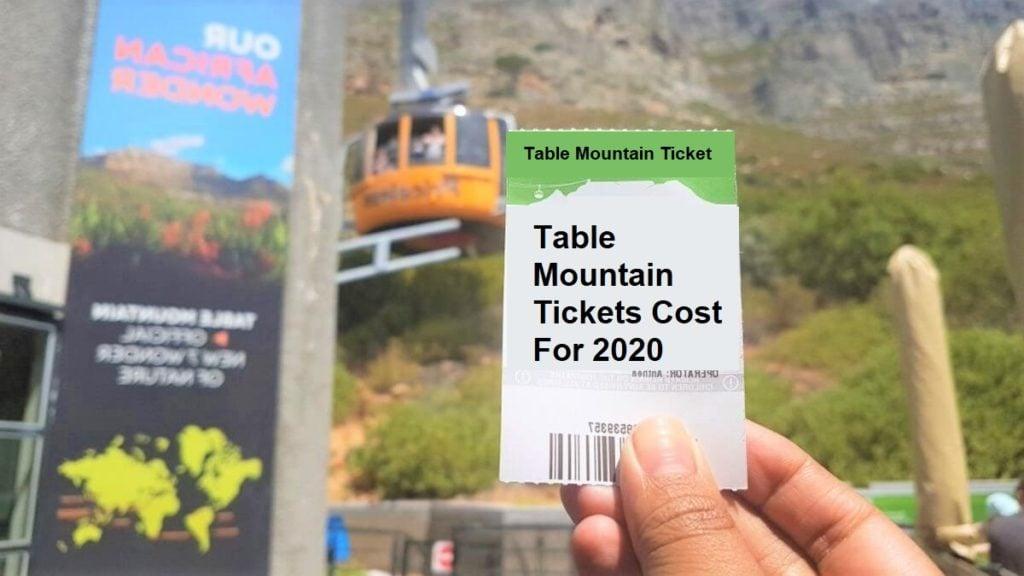 tree-behind-greenish-handheld-ticket