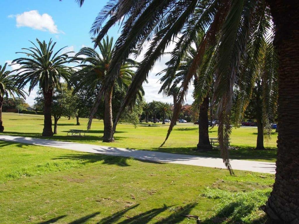 Nesca Park in The Hill