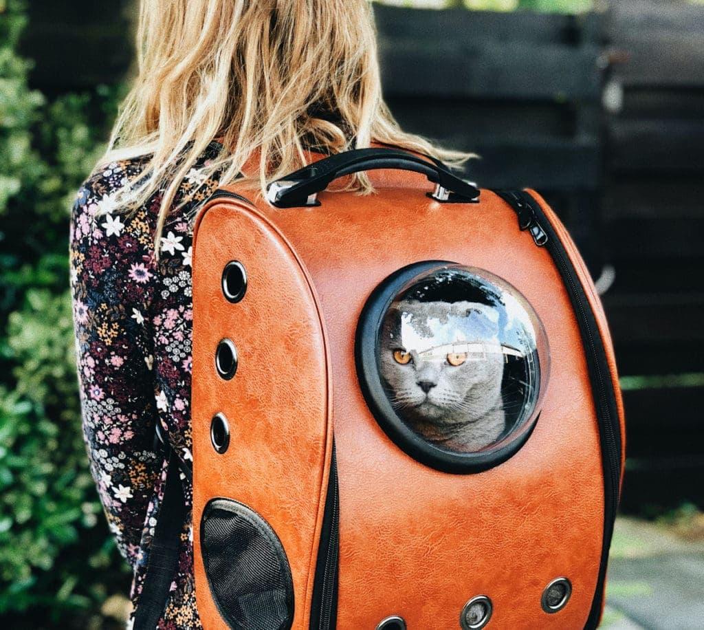 Backpack 2 Edited