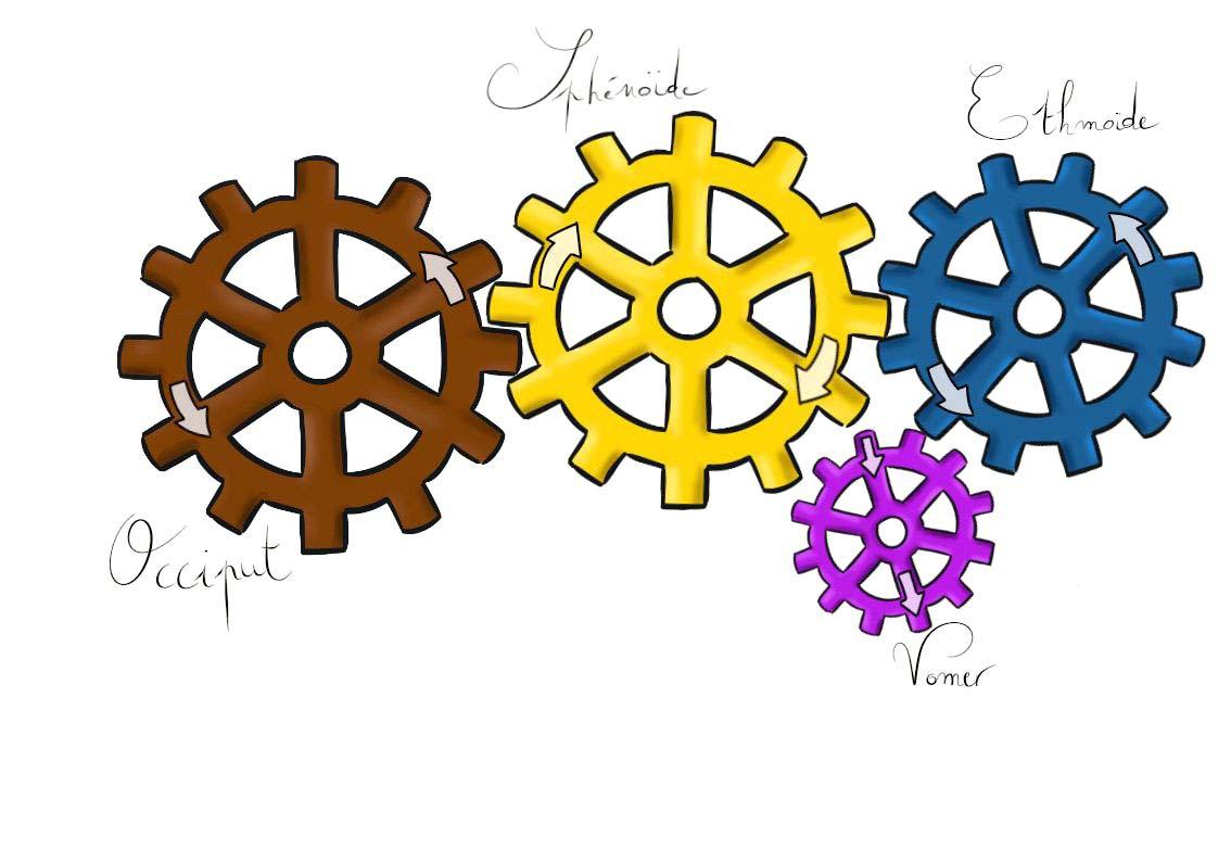 SSB-SSE-roues-methode-poyet