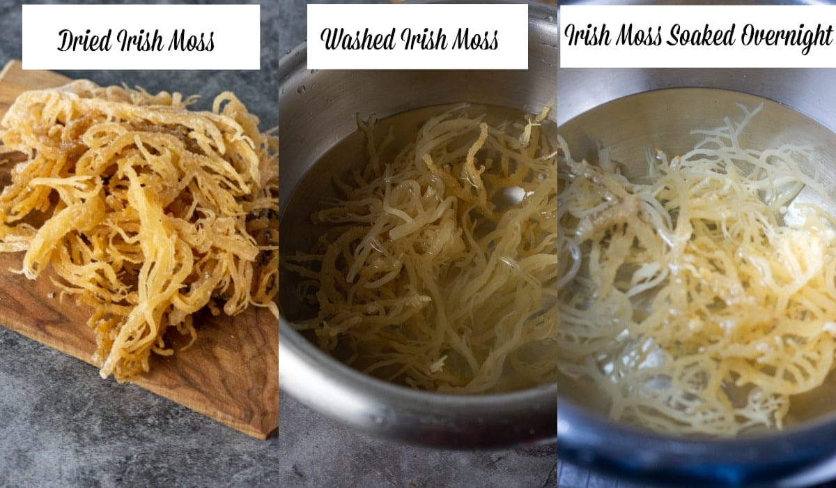 Irish moss dried, washed and soaked images