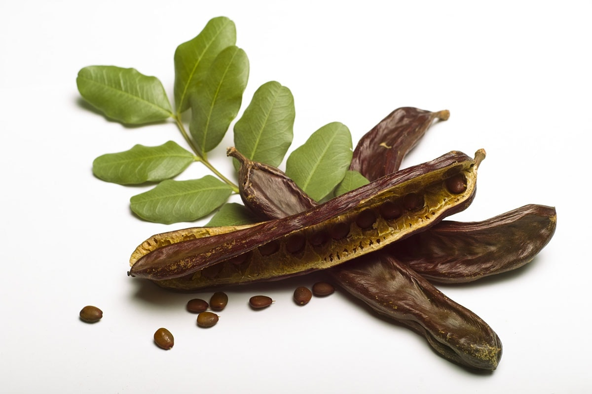 Carob pods with leaves on a white background
