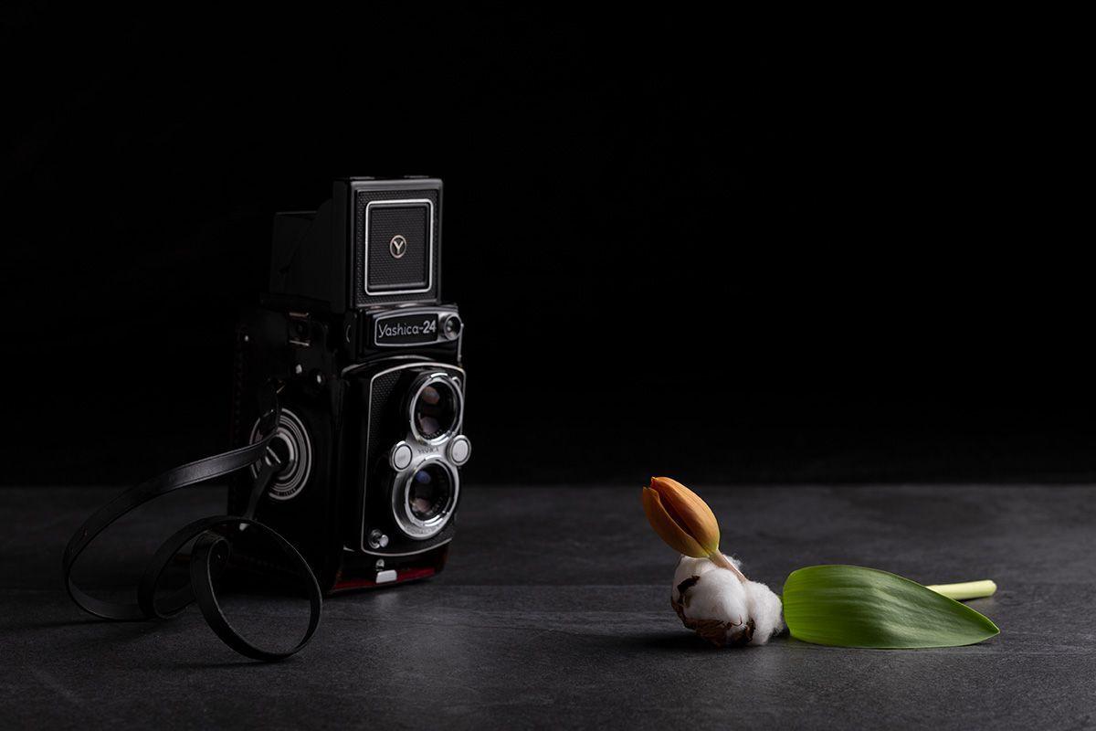 clases particulares fotografia santander