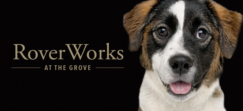 RoverWorks