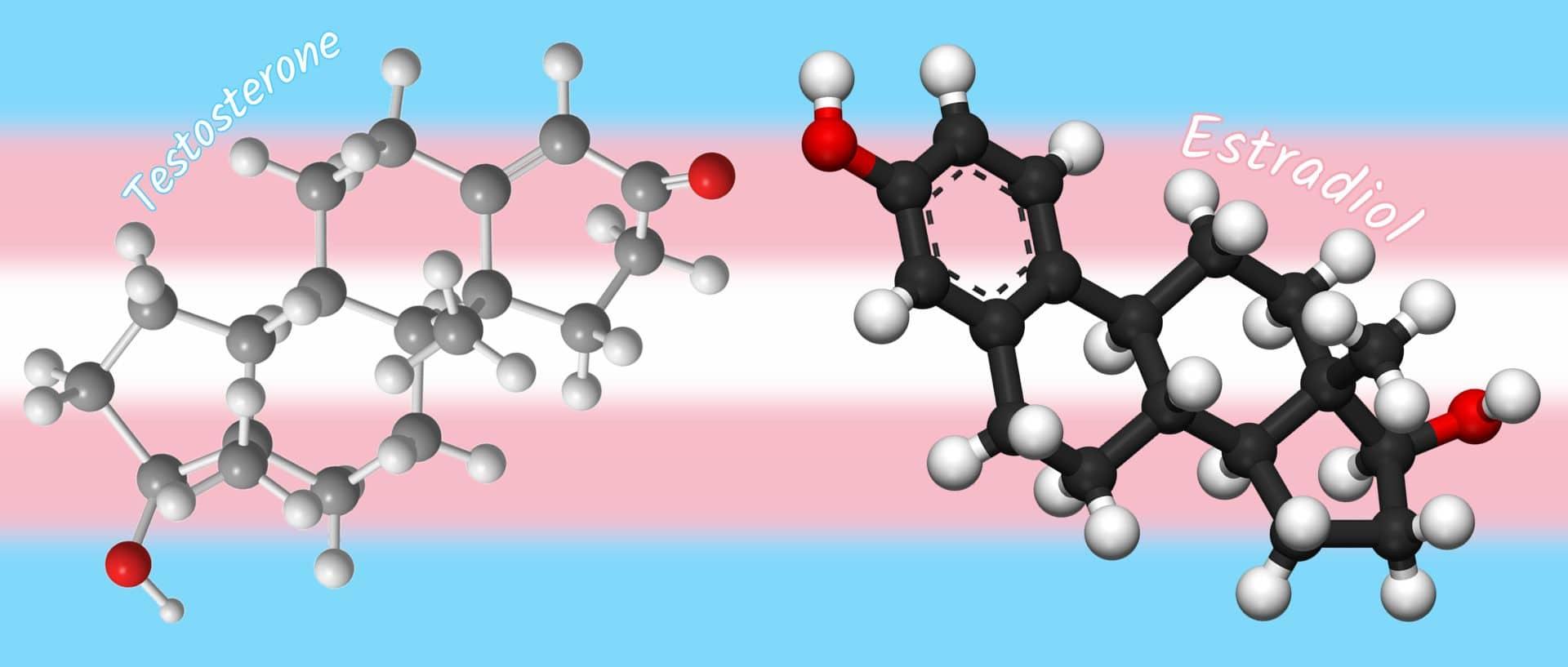 Hormones - Testosterone, Estradiol - 3D balls