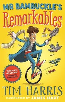 The Remarkables Book Series