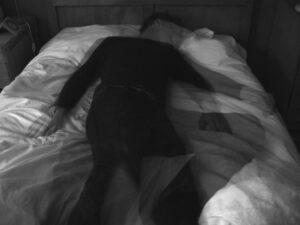 sleep - EMDR
