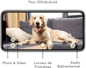 caméra pour chat interactive