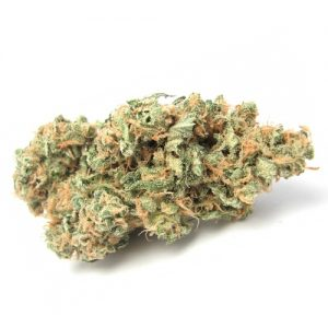 Blue Dream Weed