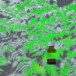 Fougere Parfumöl 20ml